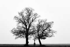 Black-and-white silhouettes of two trees and a memorial cross in the sky.South Moravia.Czech republic. Black-and-white silhouettes of two trees and a memorial Royalty Free Stock Images
