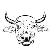Black and white sketch of a asian cow's face Stock Photography