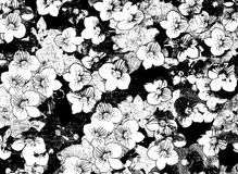 Black and white sketching floral background. Black and white sketching floral card with small flowers on grunge stained and striped background royalty free illustration