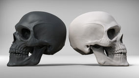 Black and white skulls. 3D Illustration Stock Photos