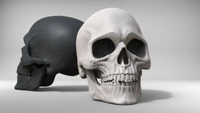 Black and white skulls - studio shot. 3D Illustration Royalty Free Stock Photos