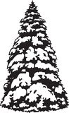 Black and White Snowy Fir Tree Illustration. Black and white vector illustration of a snowy fir tree vector illustration