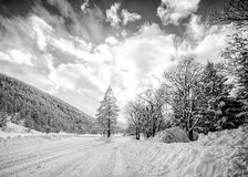 Black and white snowy mountain landscape Royalty Free Stock Photography