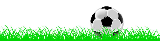 Black and white soccer ball or football on grass Royalty Free Stock Photography
