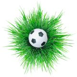 Black and white soccer ball on grass. Stock Photo