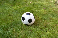 Black and White soccer ball Royalty Free Stock Image