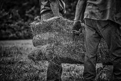 Black & White of Square Hay Bale with Antique Bale Hooks Royalty Free Stock Photos