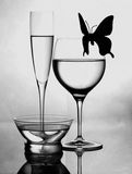 Black and white still life Royalty Free Stock Photography