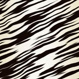 Black and white stripe animal Royalty Free Stock Photography
