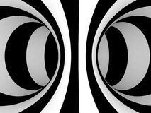 Black and White Stripes Projection on Torus. Royalty Free Stock Photo