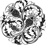 Black and white stylized vector image of a thistle Stock Photo
