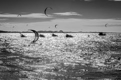 Black and white sunset with kite surfers on sea royalty free stock image