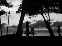 Black and white sunset view. At the beach with silhouette of trees and totem poles Stock Photos