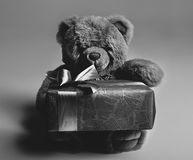 Black and White Teddy Bear Royalty Free Stock Photography