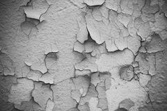 Black and white texture of exfoliated plaster royalty free stock photo