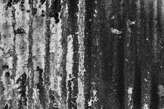 Black and white textured wall with mold. Black and white old textured wall with mold background stock photos