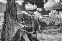 Black & White, Thailand taken in Near Infrared Stock Photography