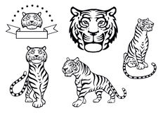 Black and white tiger illustrations Royalty Free Stock Images