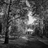 Black and white toned landscape with a straight road in a park Royalty Free Stock Photography