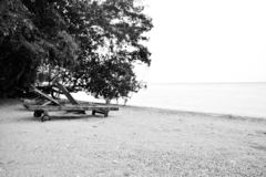Black and white traditional relaxation chair on the yellow sandy beach stock photography