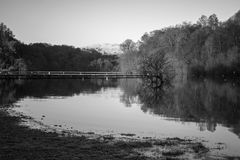 Black and white tree reflections in Loch Lomond Scotland Royalty Free Stock Photos