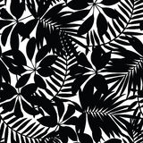 Black and white tropical leaves seamless pattern Stock Photos