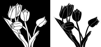Black and white tulips Royalty Free Stock Photography