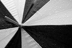 Black and White Umbrella. A wet black and white umbrella Stock Images