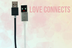 Black and white USB cables in the form of men and zhenschiny.napis love connects. Inter-friendship, love, technology of the future Stock Images
