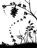 Black and white vector. Black and white natural vector illustration Stock Photos
