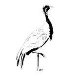 Black and white vector crane Royalty Free Stock Images