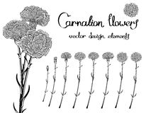 Black and white vector flowers set Royalty Free Stock Images