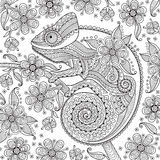 Black and white vector illustration with a chameleon in ethnic patterns on the flowering branch. It can be used as Royalty Free Stock Photo
