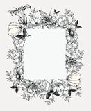 Black and white vector illustration. Vintage frame with flowers Stock Images