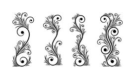 Black and white vectore curl florish vignette. Simple curved flourish elements for decoration and graphic design royalty free illustration