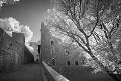 Black and white view of the old castle Royalty Free Stock Images