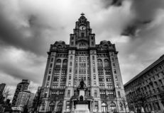 The World Famous Liver Building in Liverpool stock photography