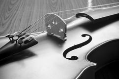 Black and white violin Royalty Free Stock Photo