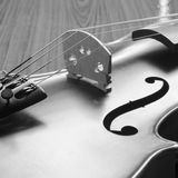 Black and white violin Stock Images