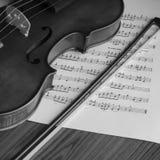 Black and white violin Royalty Free Stock Photos