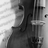 Black and white violin Stock Photography