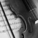 Black and white violin Royalty Free Stock Images