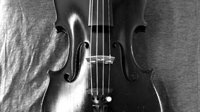 Black and white violin panorama Royalty Free Stock Photography