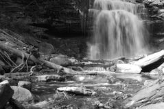 Black and White Waterfall. Long exposure black and white waterfall with maple leaves Royalty Free Stock Images