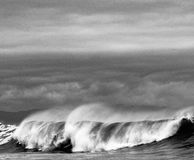 Black and white waves in Pacific Northwest Stock Images