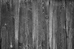 Black and white weathered barn wood background Royalty Free Stock Images