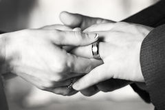 Black and White wedding rings Stock Photos
