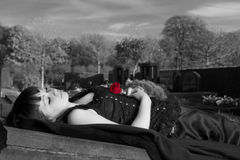 Black and white widow. Gothic widow lying on a tombstone with a red rose Stock Images