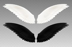 Black And White Wings Transparent Set royalty free illustration