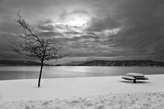 Black and White Winter. A winter scene of a bench and a bare tree in snow with a lake, cloudy skys and distant mountains in the background done in black and Stock Photography